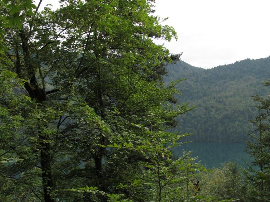 Озеро Альпзее в Швангау