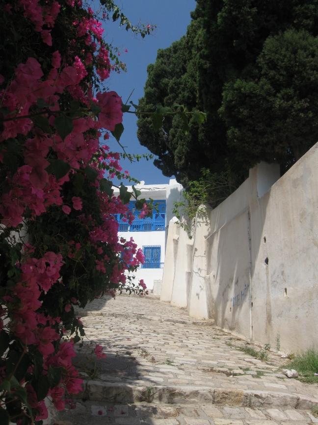 На фото улица Сиди-Бу-Саида