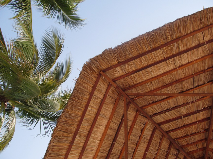 Пальмы на острове Винперл