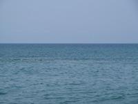 Кава Изолла в Форио пляж фото