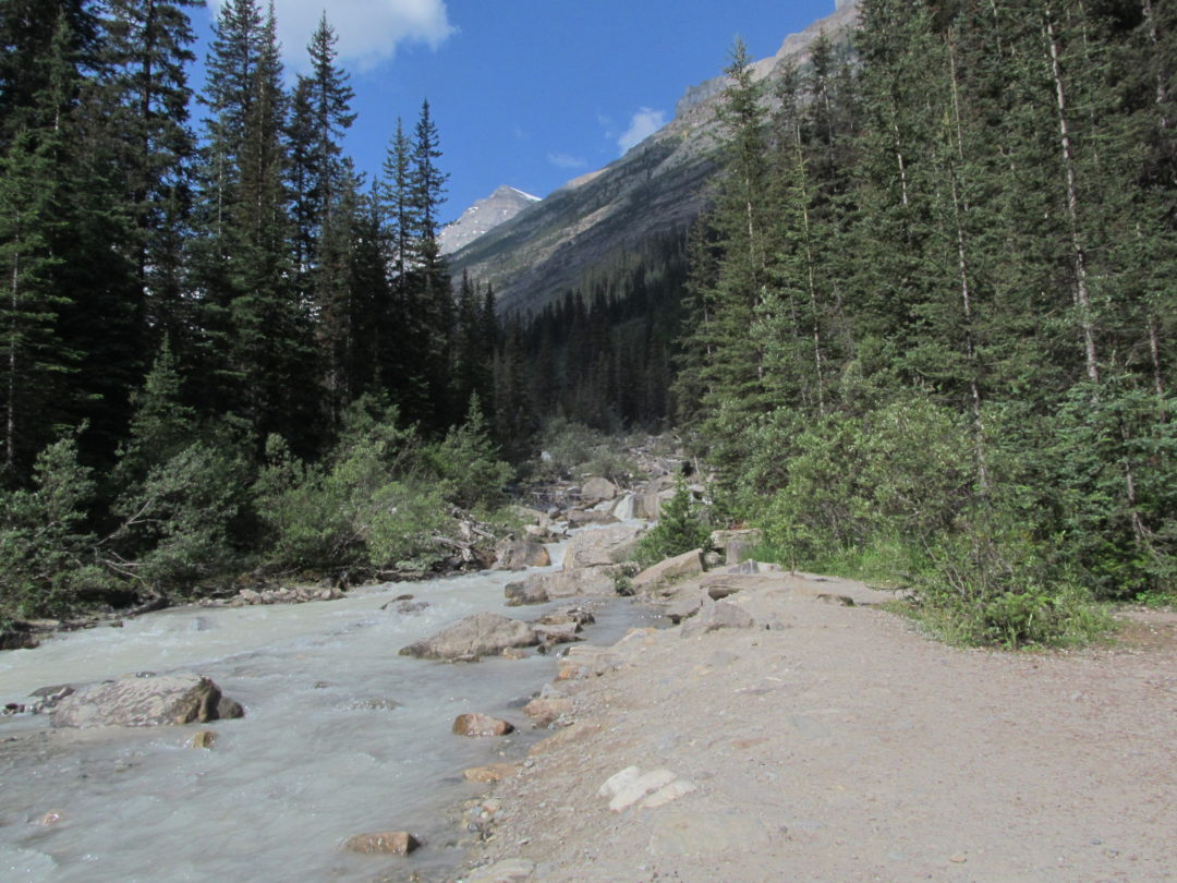 горная река в канаде
